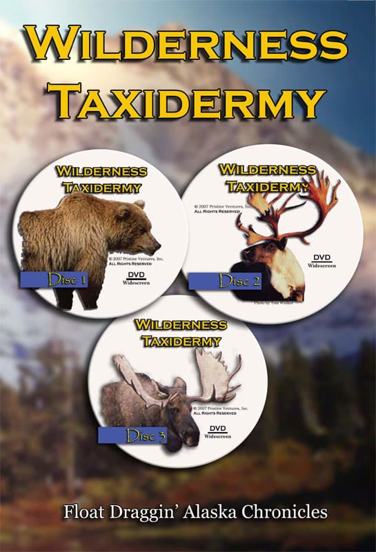 Wilderness Taxidermy